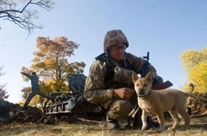 Благодаря затишью в зоне АТО военные укрепляют свои позиции