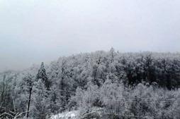Украину ожидают 25-градусные морозы