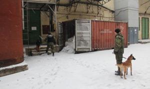 Полиция задержала 134 участника драки на фабрике «Житомирські ласощі»
