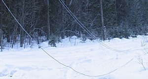 ГСЧС: Из-за снегопада жители 81 населенного пункта остались без света