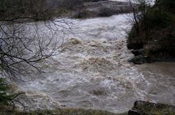 Синоптики предупредили о подъеме уровней воды на реках бассейнов Днестра и Припяти